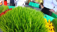 Wheat Grass and Fresh Capicola Stock Footage