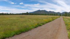 Buffalo Park Meadow Hiking Trail Wide Shot- Flagstaff AZ Stock Footage