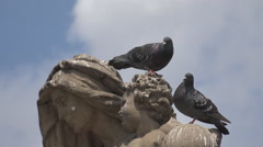 Romantic pigeon dove couple rest statue city summer day blue sky valentine love  Stock Footage