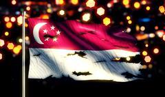 Singapore national flag torn burned war freedom night 3d Stock Illustration