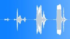 Horror Scary Creak - sound effect