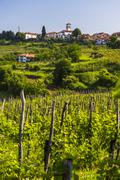 Slovenia countryside and vineyards and the hill top town of medana, goriska b Stock Photos