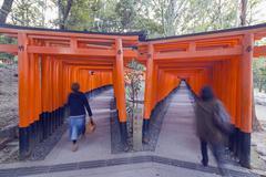 Torii gate at fushimi inari jinja, shinto shrine, unesco world heritage site, Stock Photos