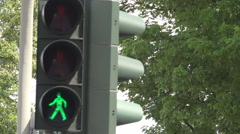 Traffic light pedestrian people crossing road travel safety trip tree branch day Stock Footage