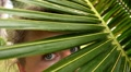 Woman Looking through Coconut Palm Leaves. Slow Motion. HD Footage