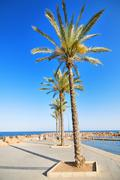 Promenade and beach in torrevieja, alicante, spain. Stock Photos