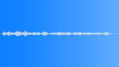 Fly Buzzing 02 - sound effect