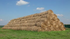 Mow harvest and green grass, and Farm layloft - stock footage