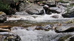 Mountain Stream Flowing Through the Boulders Stock Footage