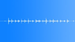 Feet,Grass,Run,Circles 1 - sound effect
