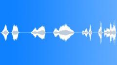 Sound Design,Alien Transform 1 Sound Effect