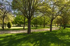 public park in spring - stock photo