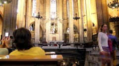 Holy Cross and Saint Eulalia cathedral. Gothic Quarter. Barcelona Stock Footage
