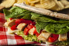Stock Photo of healthy grilled chicken pesto flatbread