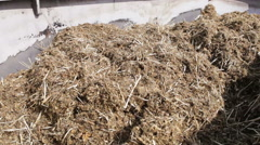 Mixed fodder is produced for cows Stock Footage