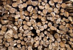 The stack of chopped fire wood Stock Photos
