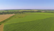 Stock Video Footage of Yellow and green  field of wheat. Aerial agricultural  landscape