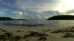 Birds flying over the water in the USVi Stock Footage