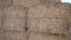 Hay in farm Stock Footage