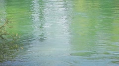 MREZ 41 Green river water with reflections Stock Footage