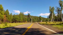 Viewpoint Of Driver In Coconino National Forest Near Flagstaff AZ Stock Footage