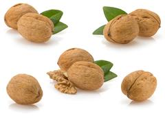 Walnuts on white background Stock Photos