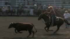 Stock Video Footage of Steer roping team--Slow