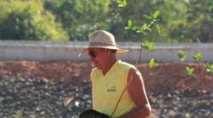 Man planting a tree Stock Footage