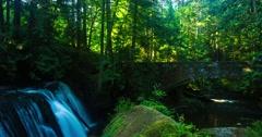 Whatcom Falls | Bellingham Stock Footage