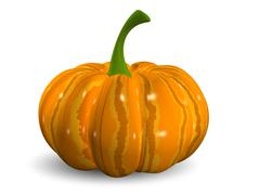 pumpkin - stock illustration