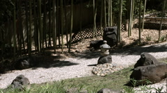 Stone and Bamboo garden Stock Footage