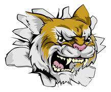 wildcat head coming through wall - stock illustration