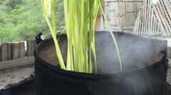 Large pot with reeds being boiled Stock Footage