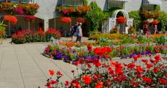 4K Italian Garden, Red Flowers, Butchart Gardens, Victoria British Columbia Stock Footage