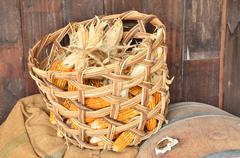 Toast sweet corn with the husks still on in the basket Stock Photos