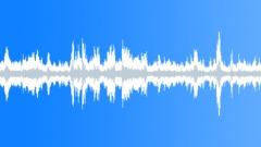 Starlings flock loop Sound Effect