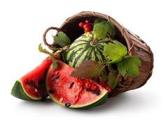 Watermelon and guelder - stock photo