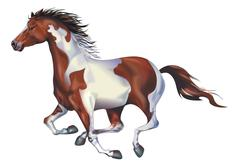 Galloping spotted horse art illustration isolated on solid white background. Stock Illustration
