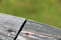 Old weathered wood planks joined Stock Photos