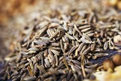 fennel seeds closeup. fennel on wood macro photo. - stock photo