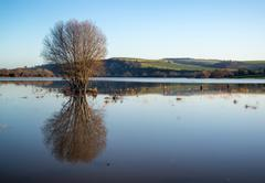 Mirror reflections of landscape in flood plains in winter Stock Photos
