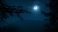 Trees Framing Night Forest With Moon - stock footage