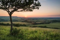 Landscape image summer sunset view over english countryside Stock Photos