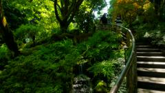 4K Stairs Descending into Japanese Gardens, Stream and Green Ferns Stock Footage
