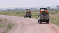 GAZELLE AFRICAN WILDLIFE SAFARI TOURISTS GAME DRIVE Stock Footage