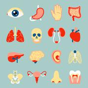 Human organs set - stock illustration