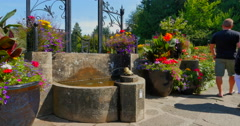 4K Fountain in Rose Garden, Butchart Gardens, Victoria Canada Stock Footage