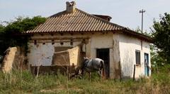 Household of poor people - stock footage