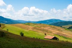 Landscape in the ukrainian carpathians Stock Photos