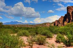 Sonora desert Stock Photos